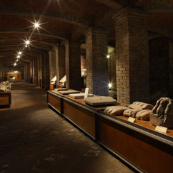 Museo Civico Polironiano - Musée - environnements